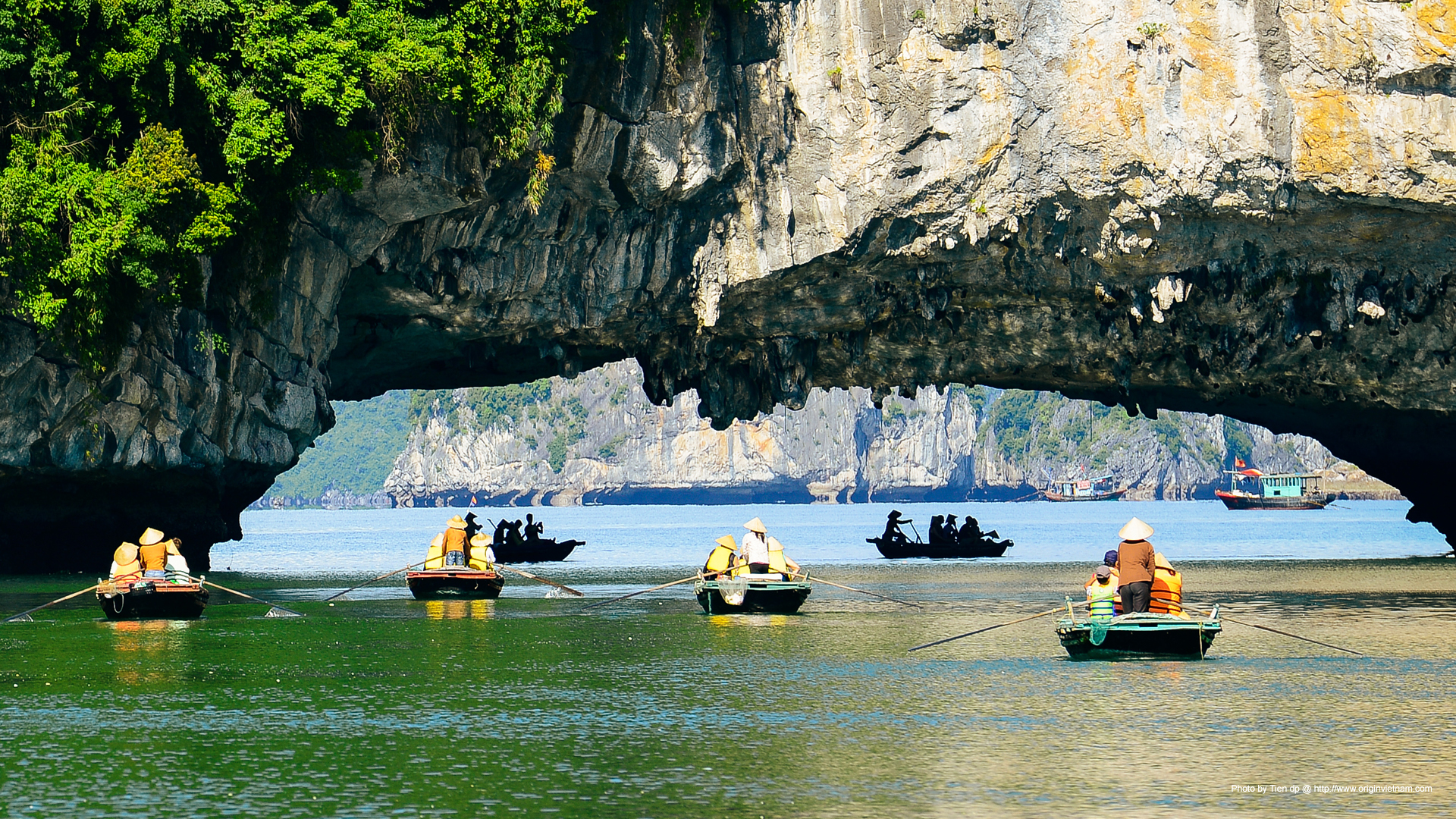Bamboo boat serving tourist in Halong Bay