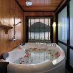 beautiful and luxurious bath tub on halong cruise