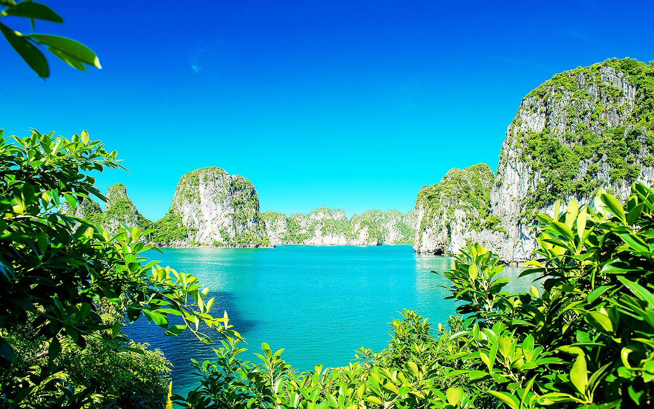 View Halong Bay from Bo Hon Cave