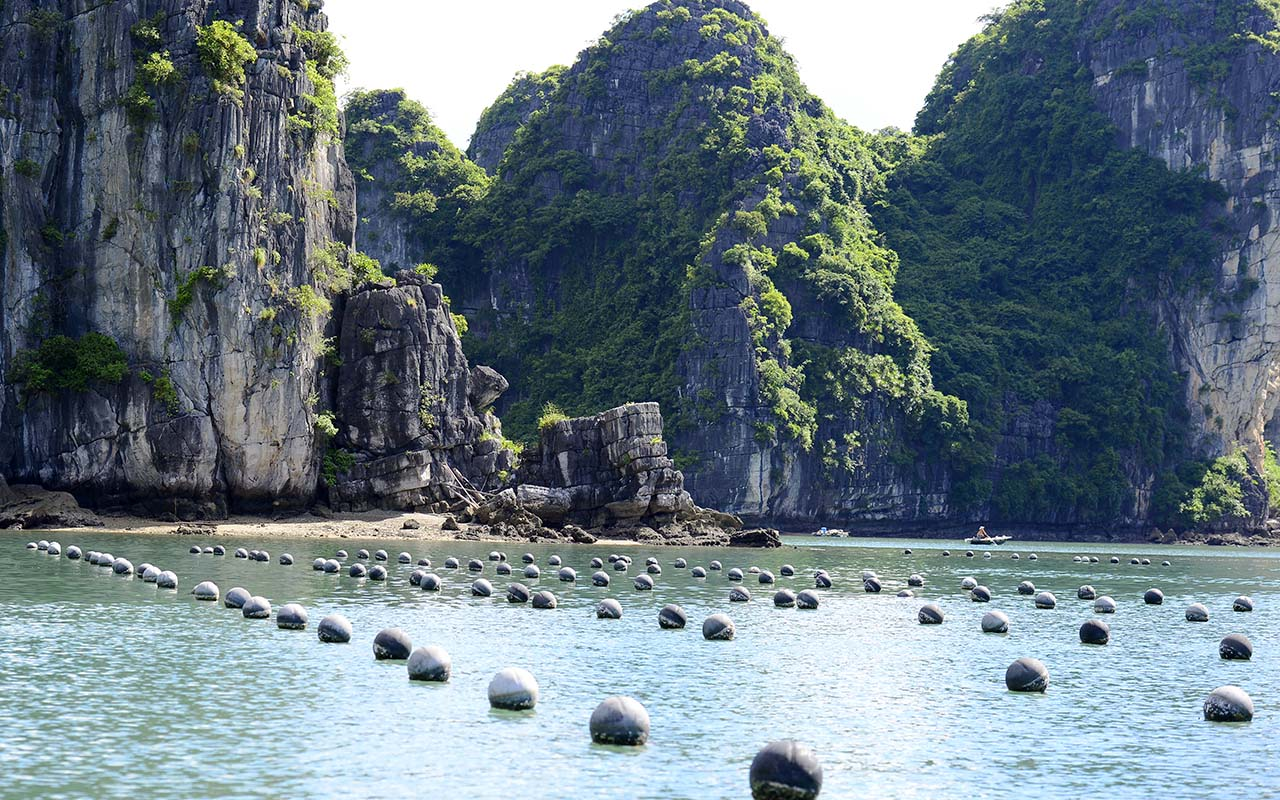 a halong bay cruise tour place to visit