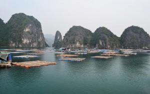 Vagia floating village in Lan Ha Bay via halong cruises