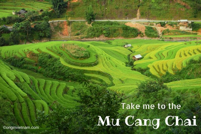 Mu Cang Chai terraced fields - Yen Bai