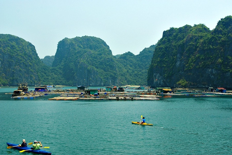 Best Cruises in Halong Bay